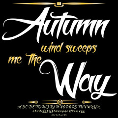 Font Script Typeface Autumn wind sweeps me  the Way vintage script font Vector typeface for labels and any type designs