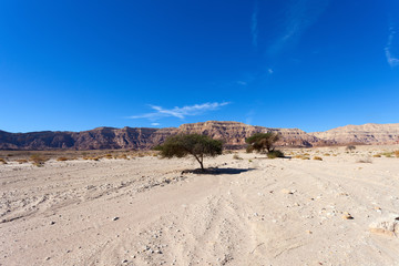 Desert mountains with blue sky in the background