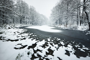 Forest lake covered with fresh snow on the surface in Latvia