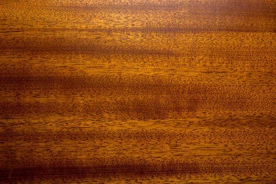 Texture of mahogany wood