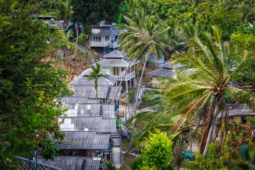 Roof bungalows in the palm jungle
