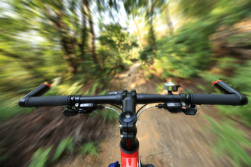 riding mountain bike on forest trial