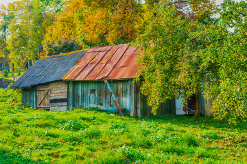 Single house on a background of green garden