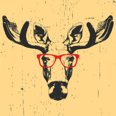 Portrait of Moose with glasses. Hand drawn illustration. Vector.