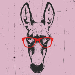Portrait of Donkey with glasses. Hand drawn illustration. Vector