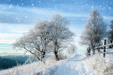 rural road covered with snow and frosted trees. beautiful winter landscape
