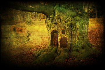 composite of an old tree with doors and window