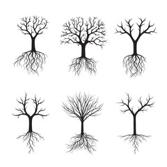 Black Trees without Leafs. Vector Illustration.