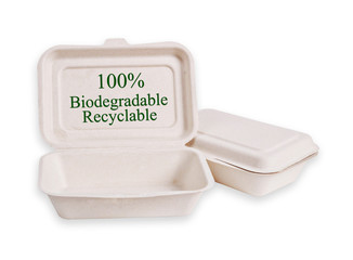 Bagasse box for food isolated.
