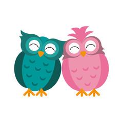 couple owl love romance vector illustration eps 10