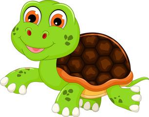 cute baby turtle cartoon walking