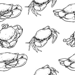 crab pattern including seamless on white background. Hand drawn