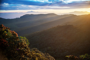 Sri Lanka: highland Horton Plains National Park