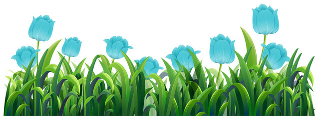 Blue tulip flowers in the green bush