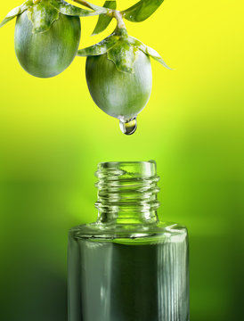 Fruits and nuts  jojoba oil drop falls into the bottle vial close-up macro on a green and yellow background. Concept idea of cosmetic oils for hair of face and body.