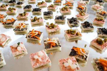 Different kinds of appetizers with olives and vegetables