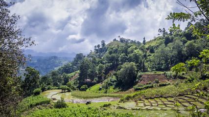 Ella landscape, Uva province, Sri Lanka