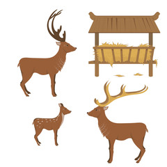 set deer feeder