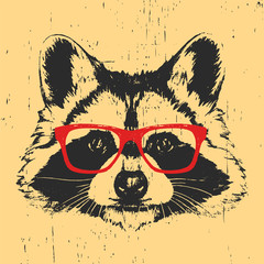 Portrait of Raccoon with glasses. Hand drawn illustration. Vector.