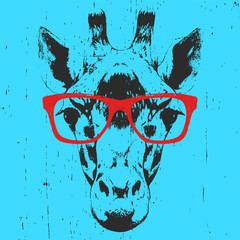 Portrait of Giraffe with glasses. Hand drawn illustration. Vector