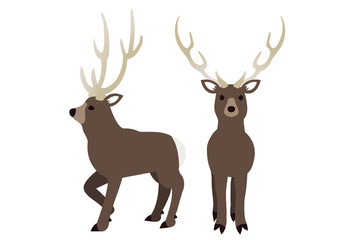 Illustration of a winter deer