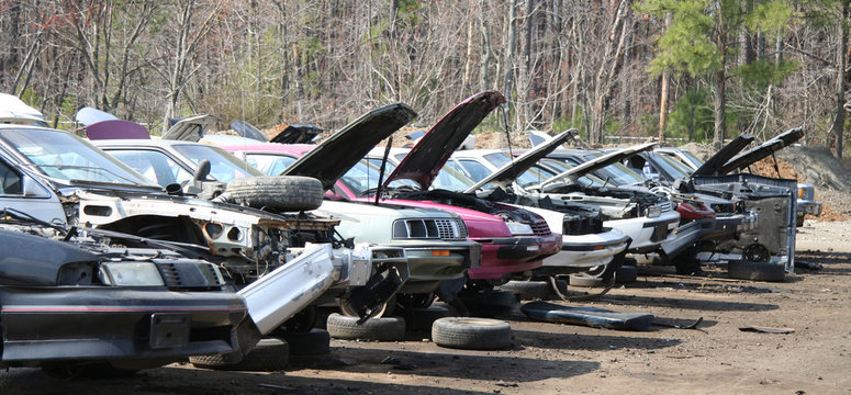 Junker cars in a row with hoods up in auto salvage yard. Horizontal.