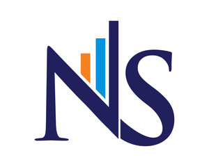 NS Letter Logo