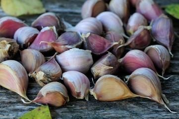 garlic bulbs on old boards