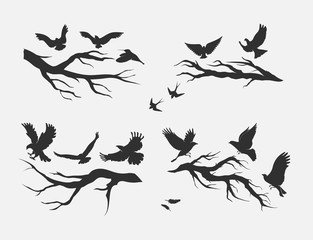 flying birds, mounted on branches