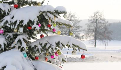 geschmückter Weihnachtsbaum in winterlicher Landschaft