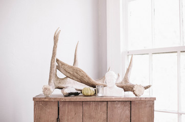 Driftwood and ornamental objects on cabinet