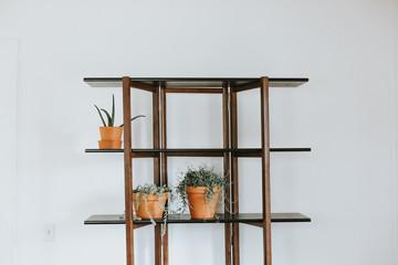 Potted plants on shelf unit