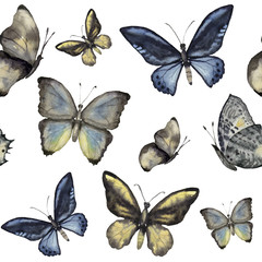 Watercolor butterfly seamless pattern. Hand painted insect ornament isolated on white background. Illustration for design, print or fabric.