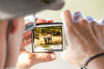 Tourist Photographing African Safari Scene