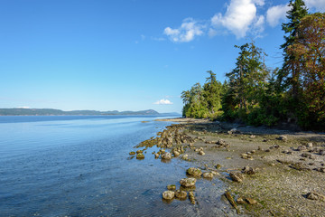Shoreline on Salt Spring Island, BC, Canada.