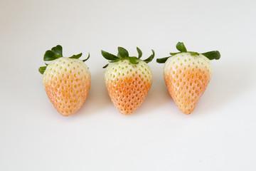 白イチゴ(淡雪)