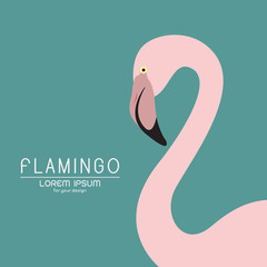 Vector of a flamingo design on blue background, Wild Animals.