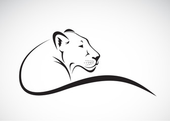 Vector of a lion female design on white background, Wild Animals