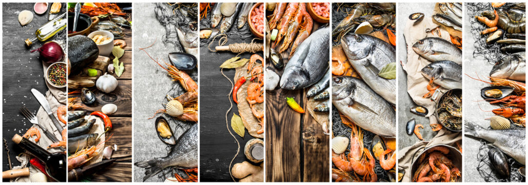 Food collage of seafood .