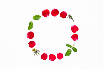 closeup of red rose petals circle isolated on white background
