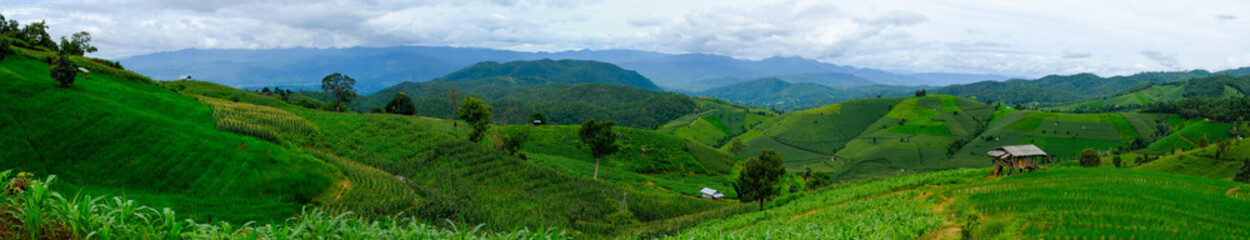 Beautiful rice terraces at Ban Pa Pong Pieng, Mae chaem, Chaing