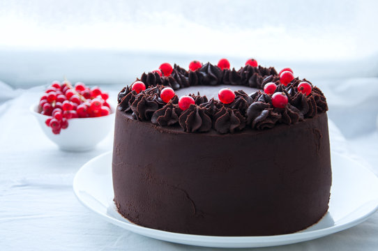 Rich chocolate cake with chocolate frosting and fresh red currants on top in a white plate on a white table.