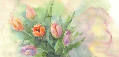 color tulips in vase watercolor