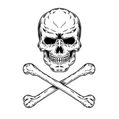 illustration of a skull and crossbones