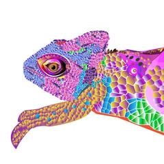chameleon lizard drawing color graphics details branch