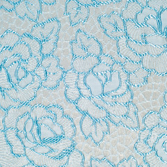 fabric lace.  lacy