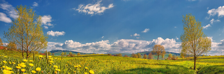 Spring Landscape Panorama