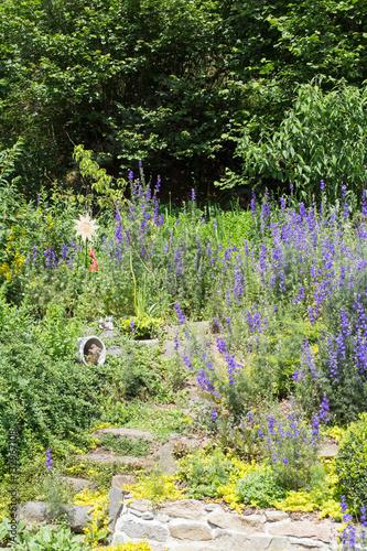 steingarten mit verschiedenen pflanzen und blumen im fr hling zdj stockowych i obraz w. Black Bedroom Furniture Sets. Home Design Ideas