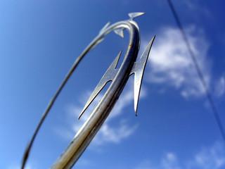Sharp razor wire against blue sky