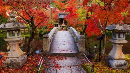 Eikando at autumn, Kyoto Wall mural